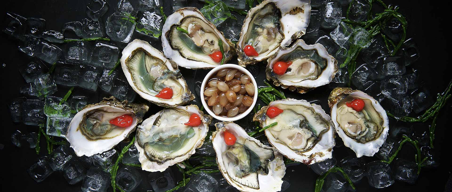 Oysters in Antwerp
